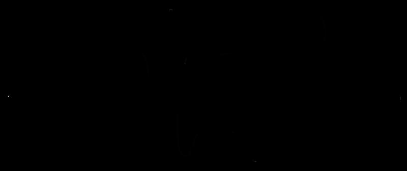 Oktopi Calligraphy
